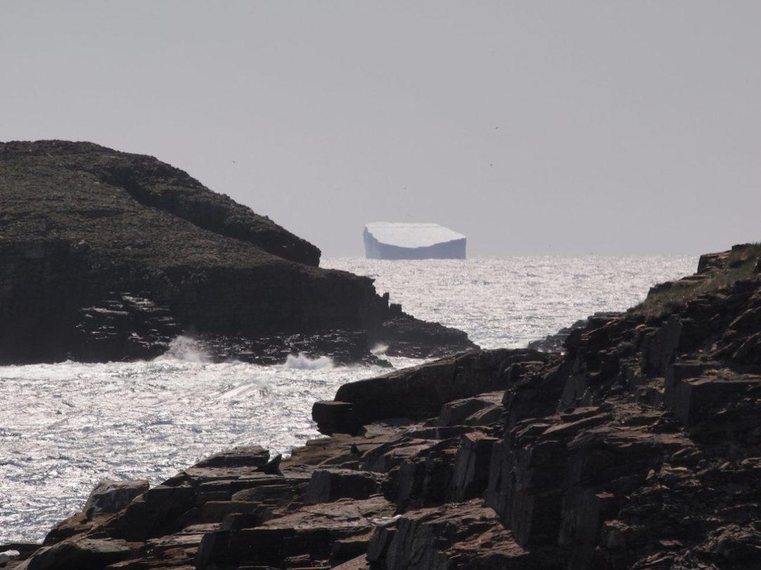 Iceberg seen from Elliston, Newfoundland, June 2, 2016. Credit: Therese Kehler