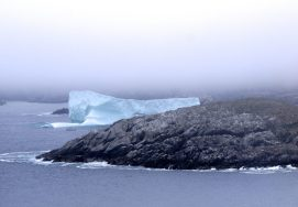 It's hard to get a sense of scale when photographing icebergs. In this one, you can see a boat (quite possibly Captain Dave's Prime Berth boat tour) passing a berg in the Twillingate main tickle. We were hiking the Jonas Trail near Little Harbour, Newfoundland, on June 4, 2016. Credit: Therese Kehler