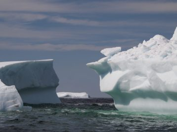 Triple play: a berg between two bergs. Photographed June 3, 2016, while on a boat tour operated by Prime Berth's Captain Dave. Credit: Therese Kehler