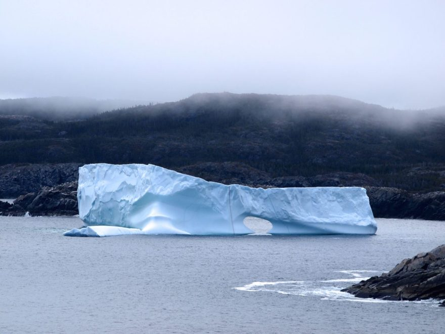 An arch starting to develop in one of the big icebergs in the Twillingate main tickle, June 4, 2016. We were hiking the Jonas Trail near Little Harbour. Credit: Therese Kehler