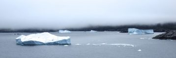 Fog and bergs in the Twillingate main tickle, June 4, 2016. We were hiking the Jonas Trail near Little Harbour. Credit: Therese Kehler