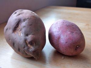 A half sweet potato and single red potato were the kitchen castoff ingredients to make a potato hash.