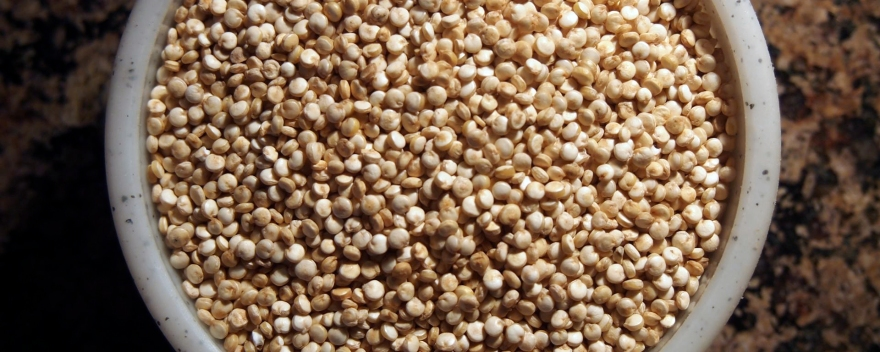 Close-up of quinoa in a dish