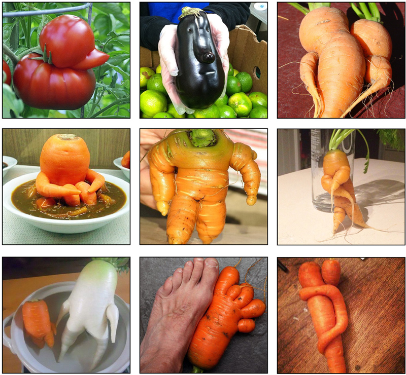 An assortment of odd shaped fruits and vegetables from the Internet.