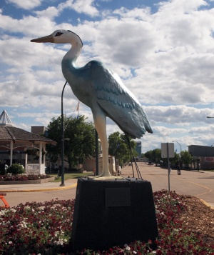 The statue of Aaron the Blue Heron dominates a place of pride in Barrhead's town centre.