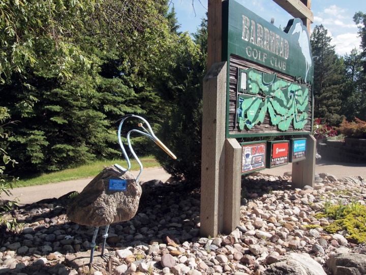 The blue heron is the official mascot of the town of Barrhead. This is the only heron we saw on the course.
