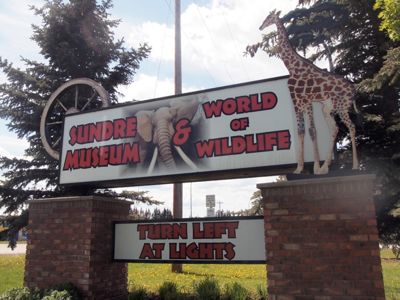 Did you ever wonder why Sundre greets visitors with a sign bearing a giraffe and an elephant?
