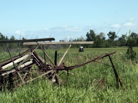 Golfers at Whitetail Crossing head down the fairway. Rusting farm equipment reminds of the region's agricultural history.