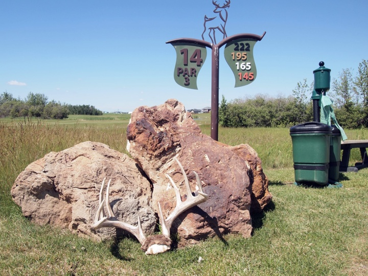 Antlers showed up on a couple of the tee box signage displays at Whitetail Crossing Golf Club in Mundare.